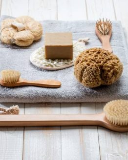 Body Brushes & Sponges